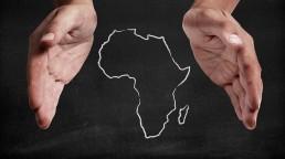 mach_consulting_expertise_diaspora